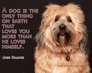 happy-dog-quote