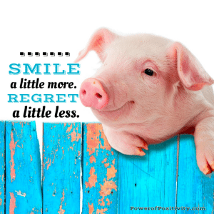 animal-quote-lessons-learned-in-life