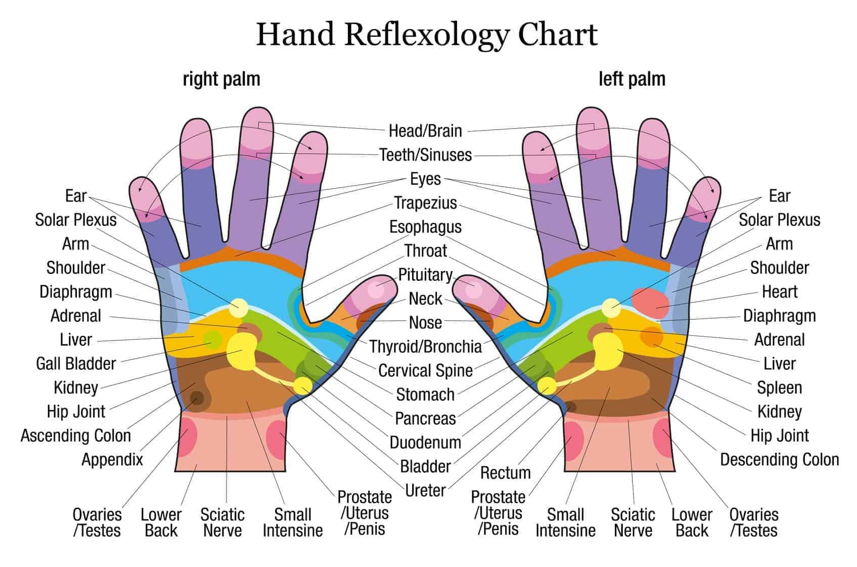 hands-reflexology
