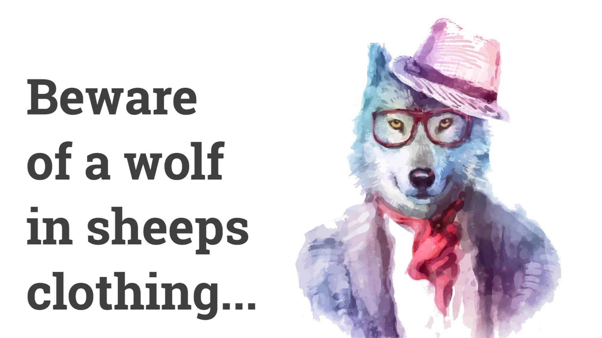 the wolf in sheeps clothing
