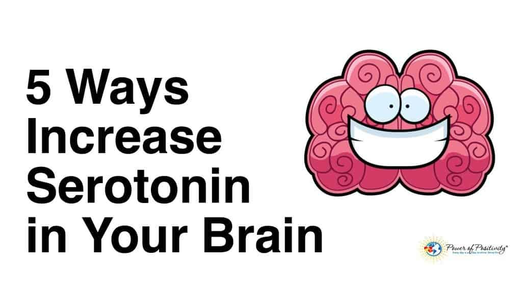 5 Ways To Increase The Serotonin In Your Brain