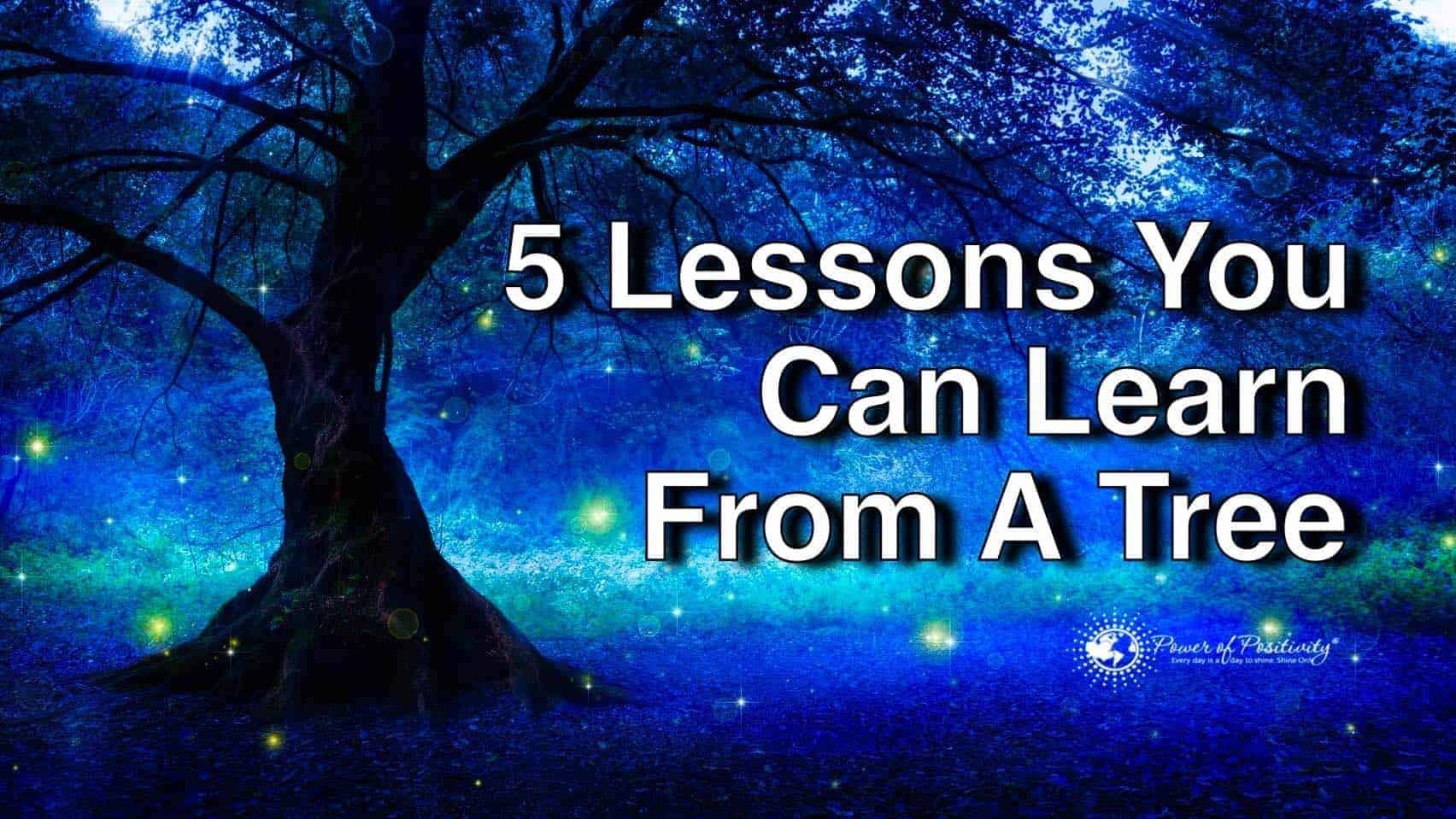 lessons from tree