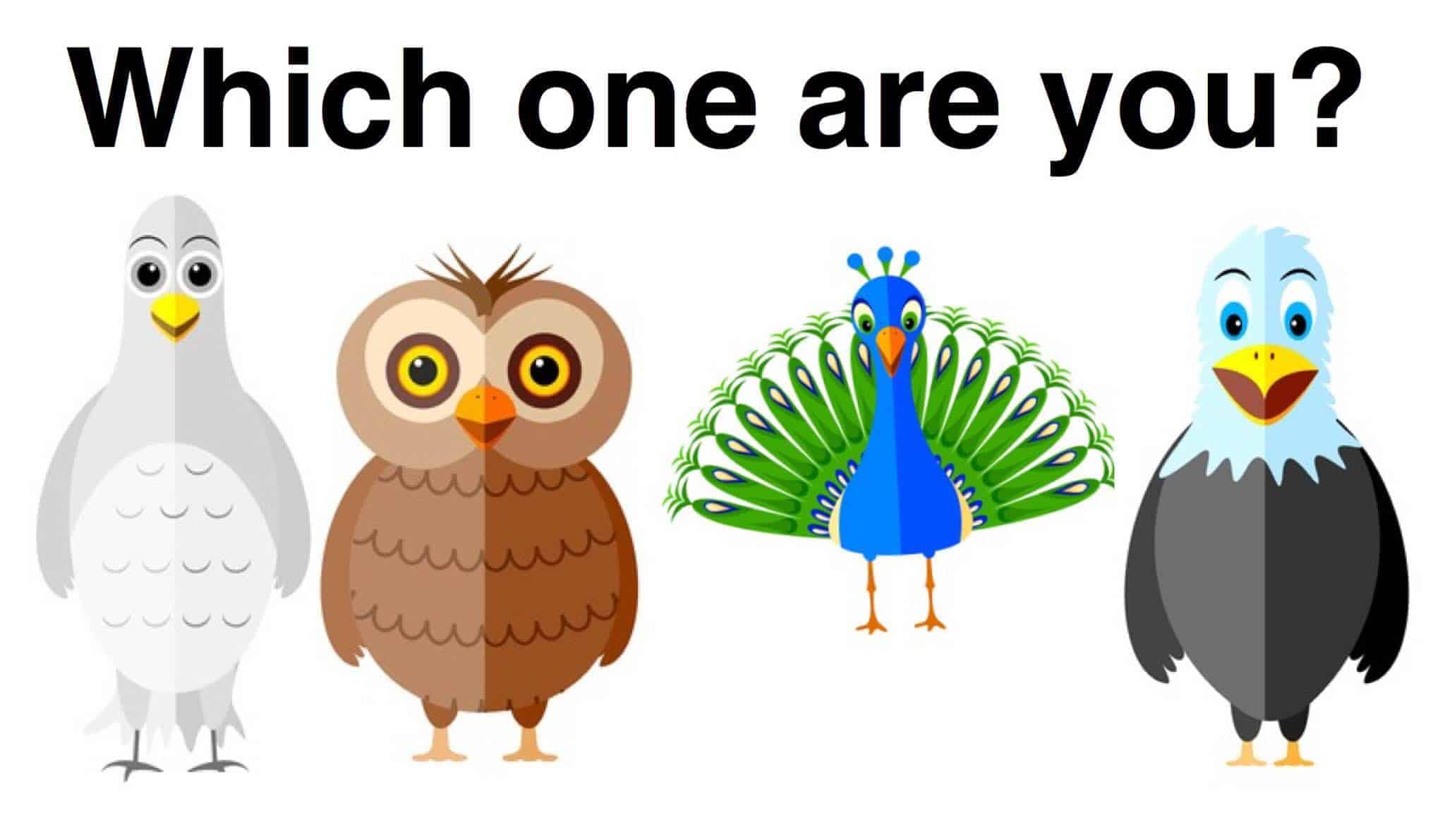 photo about Printable Leadership Personality Test called Which Hen Character Fashion Are Yourself?