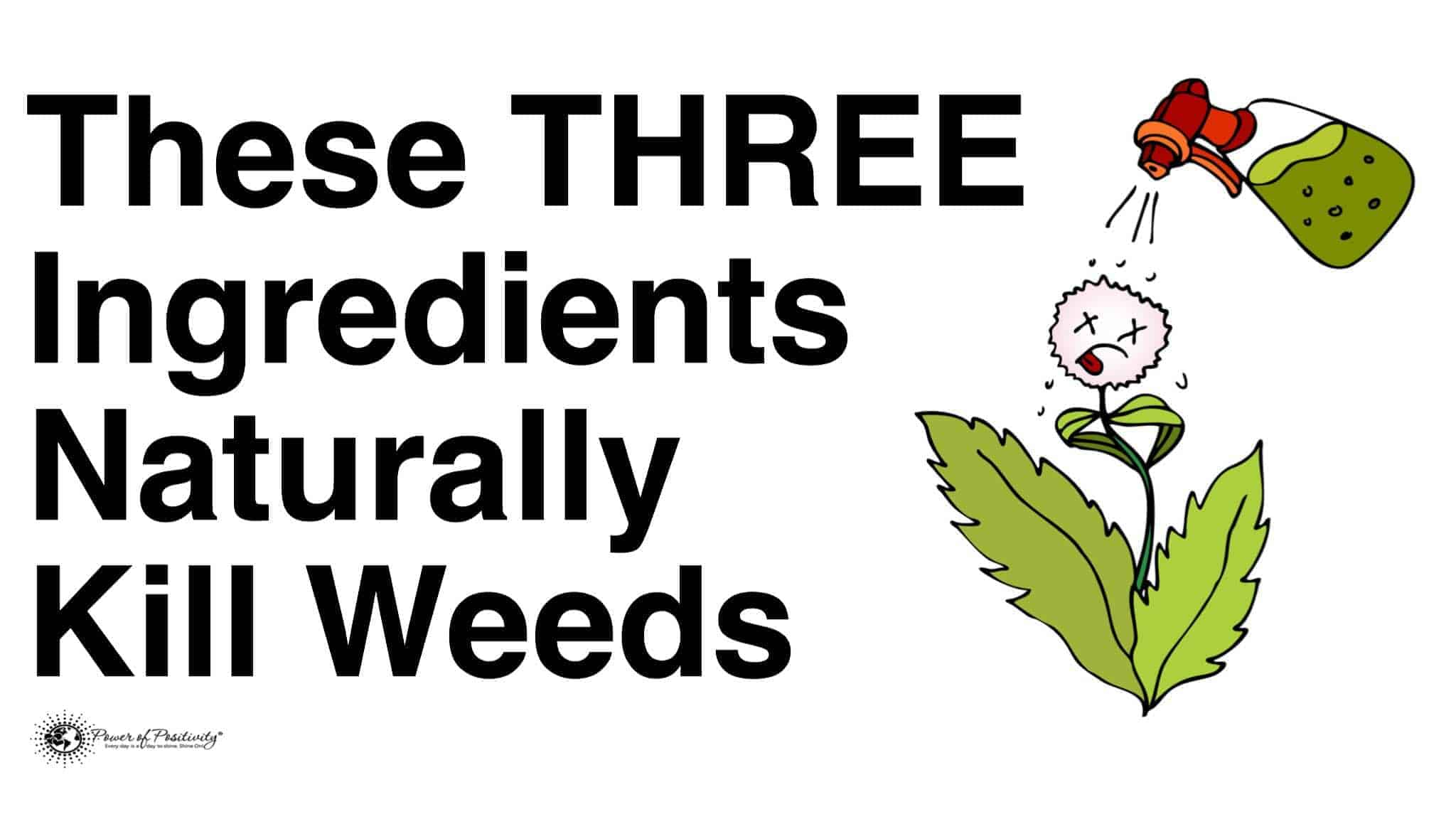 naturally kill weeds