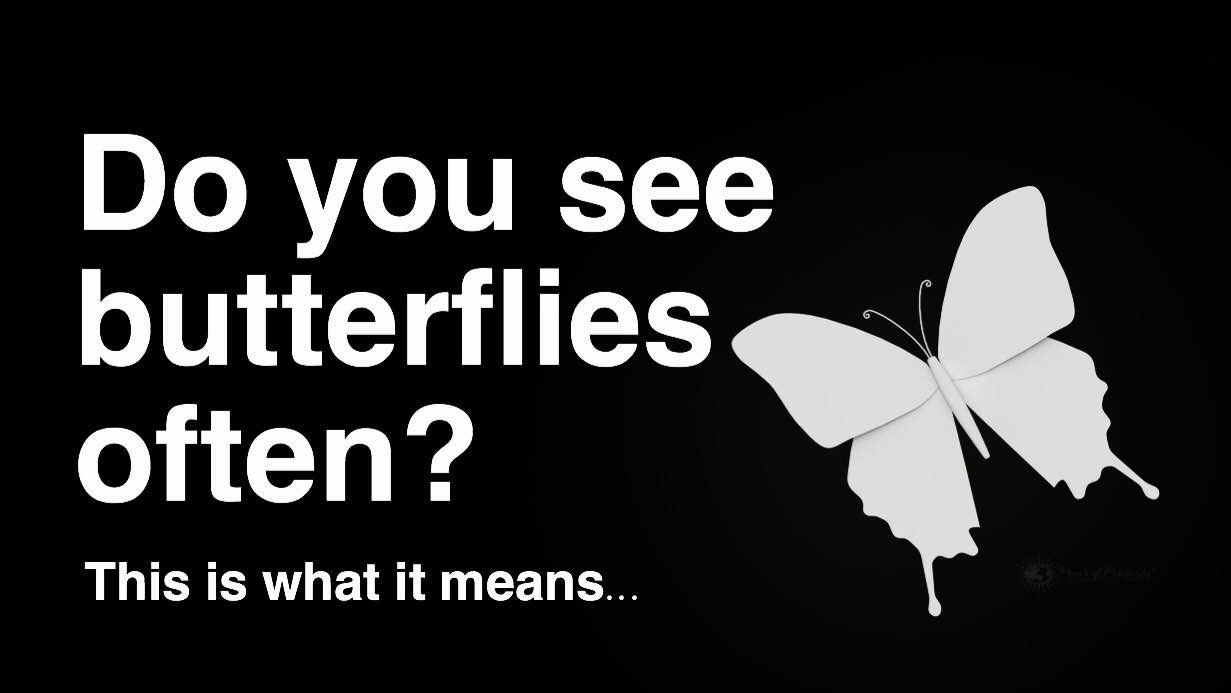 If you see butterflies often this is what it means buycottarizona