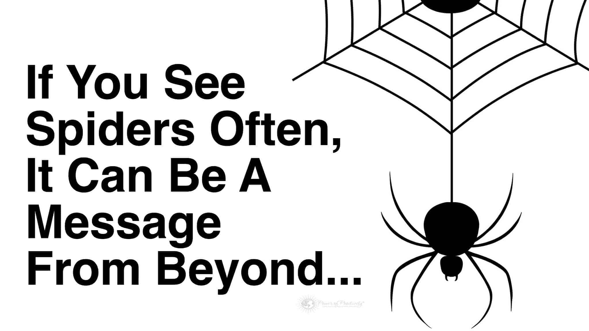 If You See Spiders Often This May Be Why