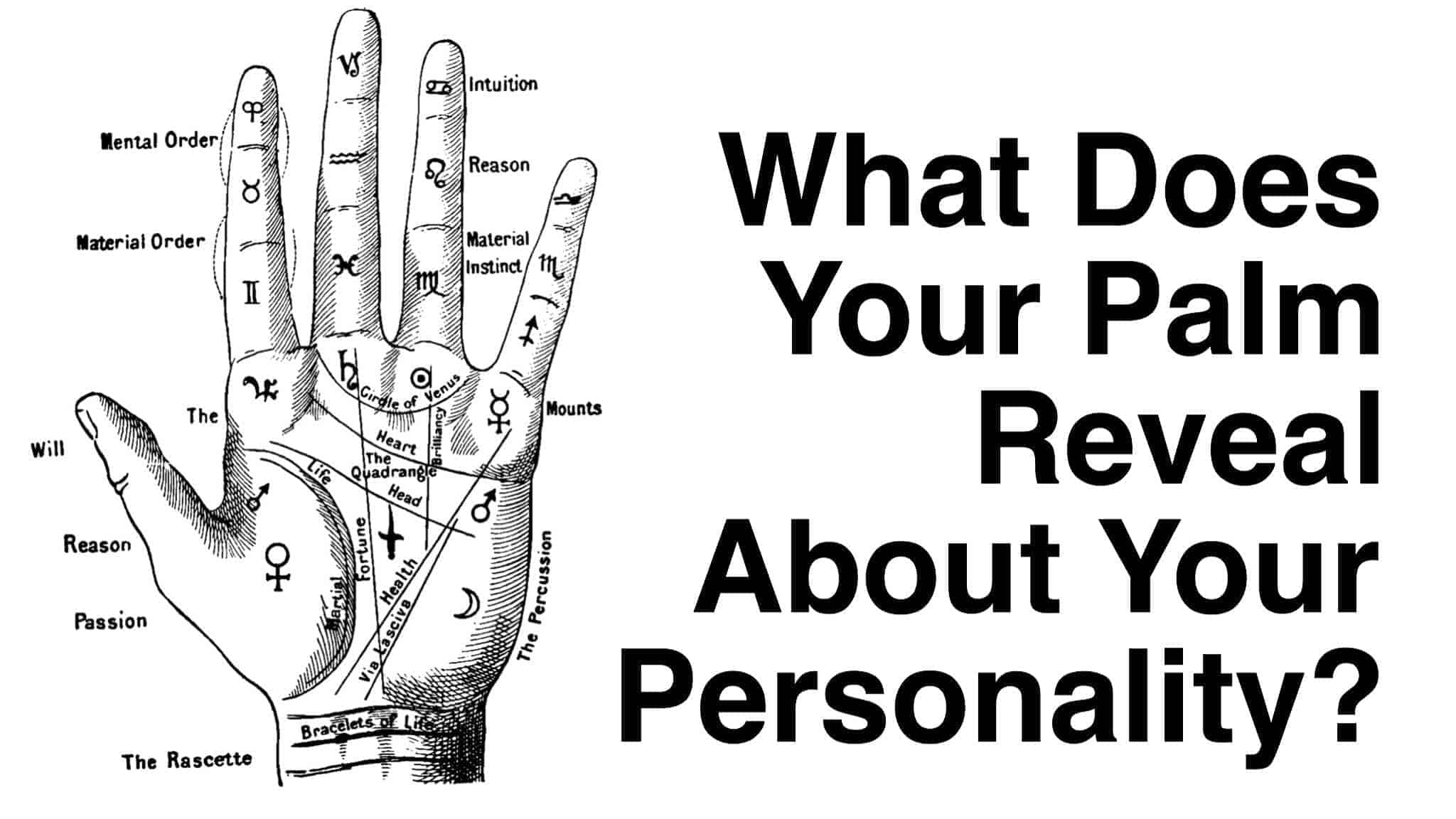 What does your palm reveal about your personality biocorpaavc Images