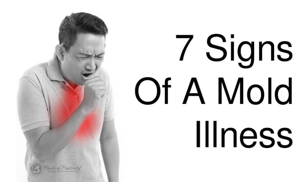 7 Signs Of A Mold Illness 1000x600