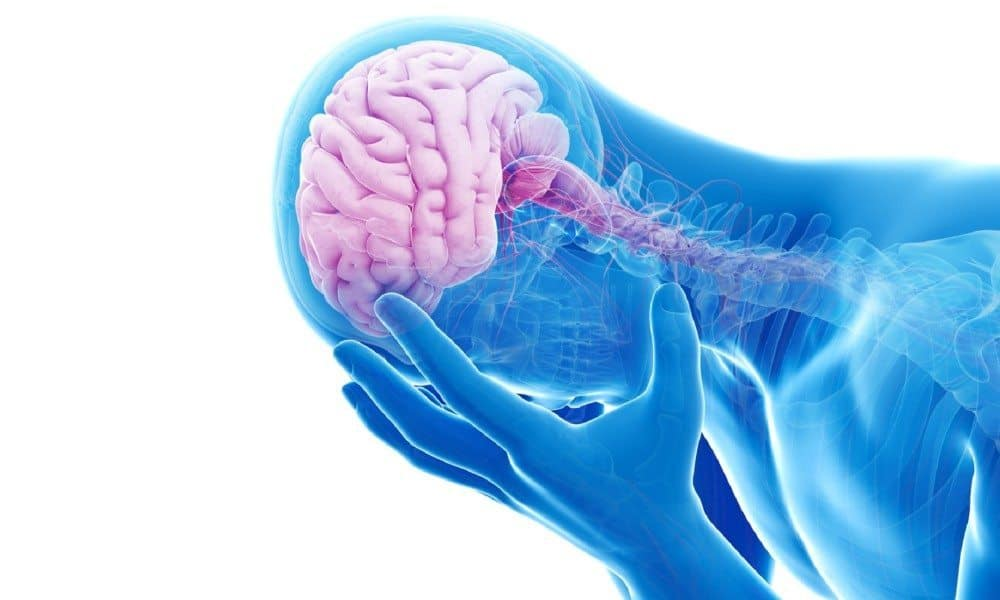 Brain booster supplement reviews photo 5