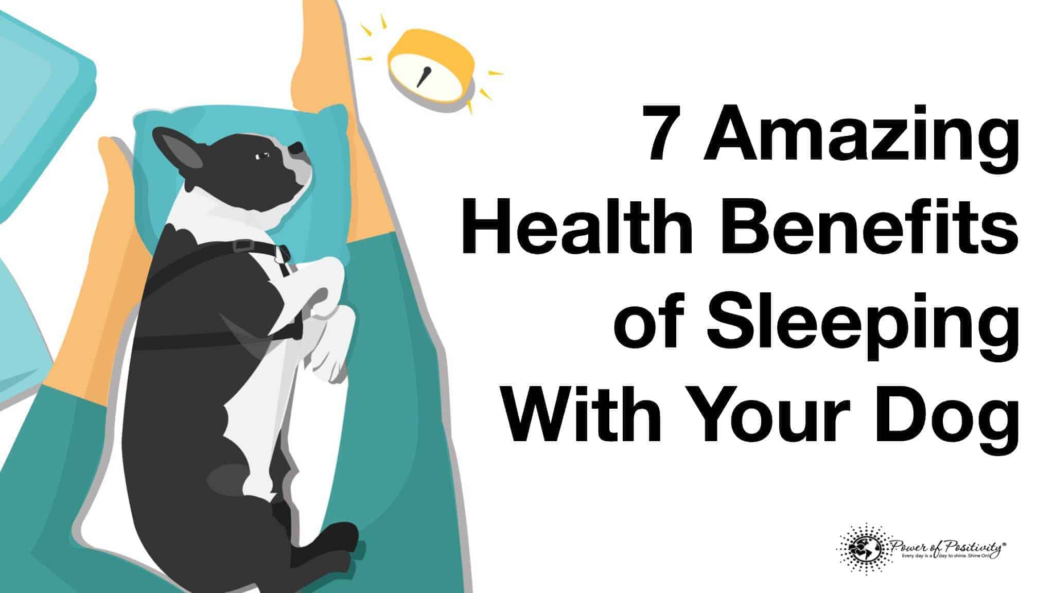 health benefits of sleeping with dog