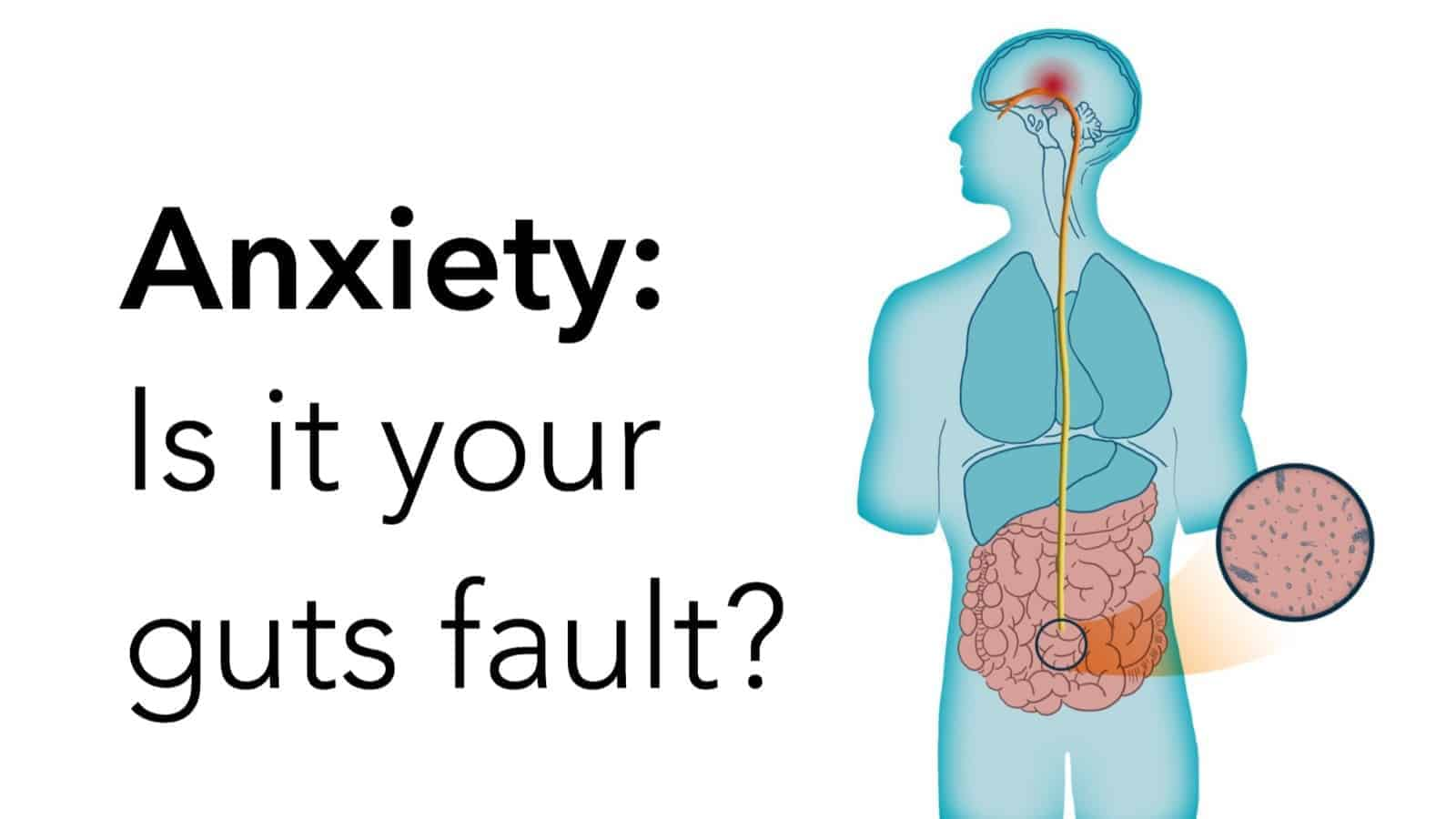 Researchers Explain How Your Gut Bacteria Causes Anxiety, According to Science