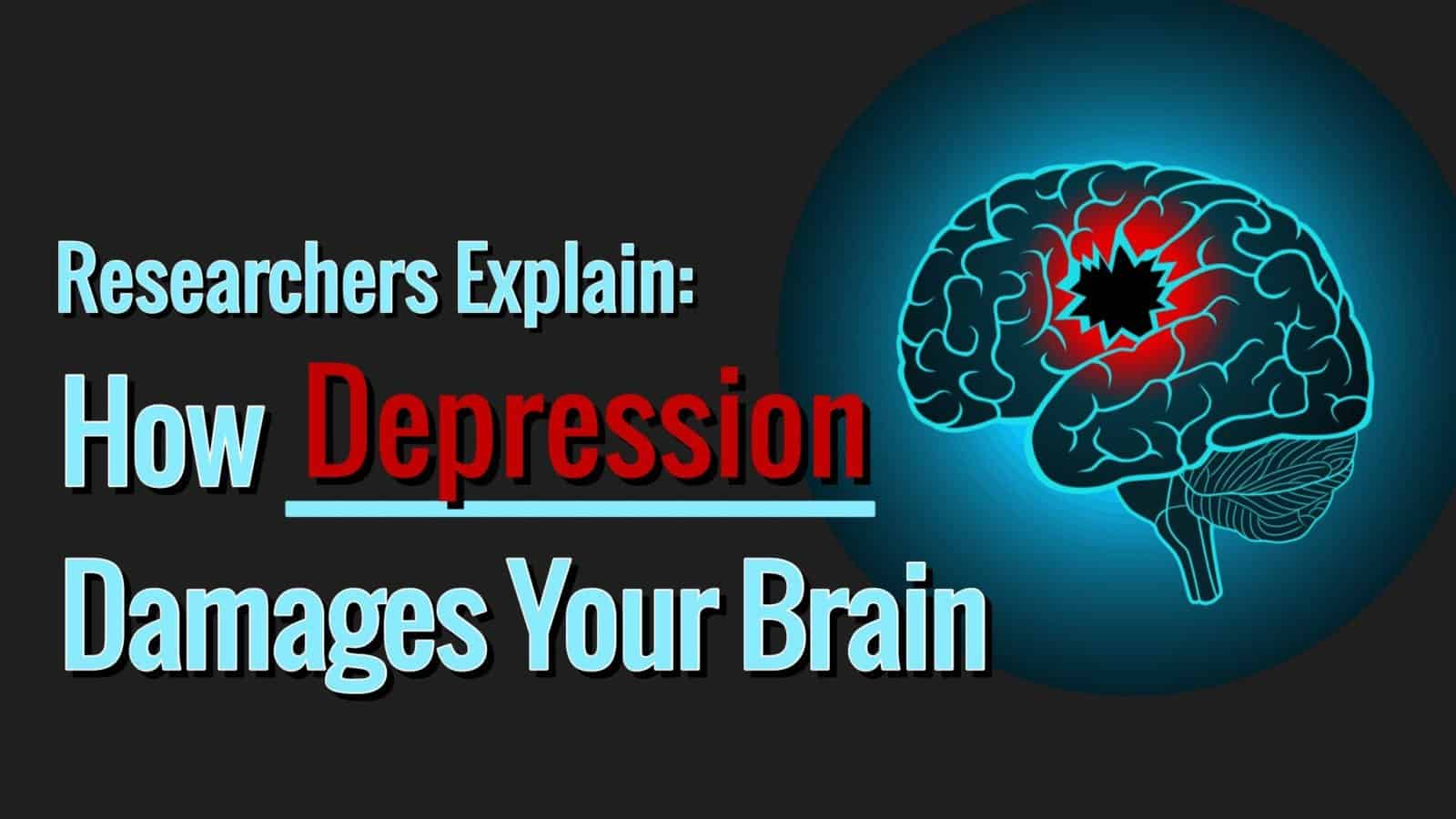 Researchers explain how depression damages parts of your brain ccuart