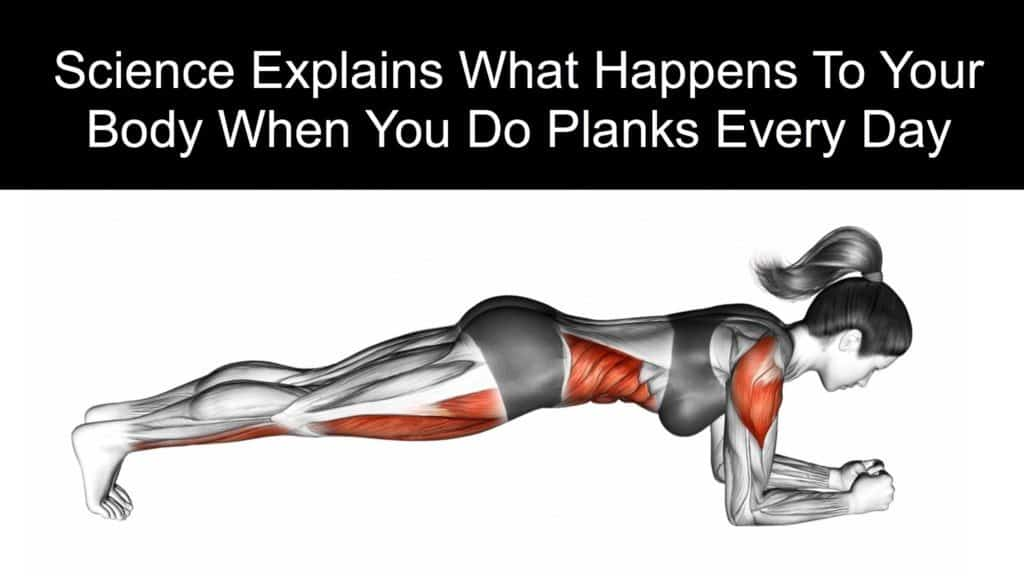 Image result for Plank is