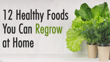foods you can regrow