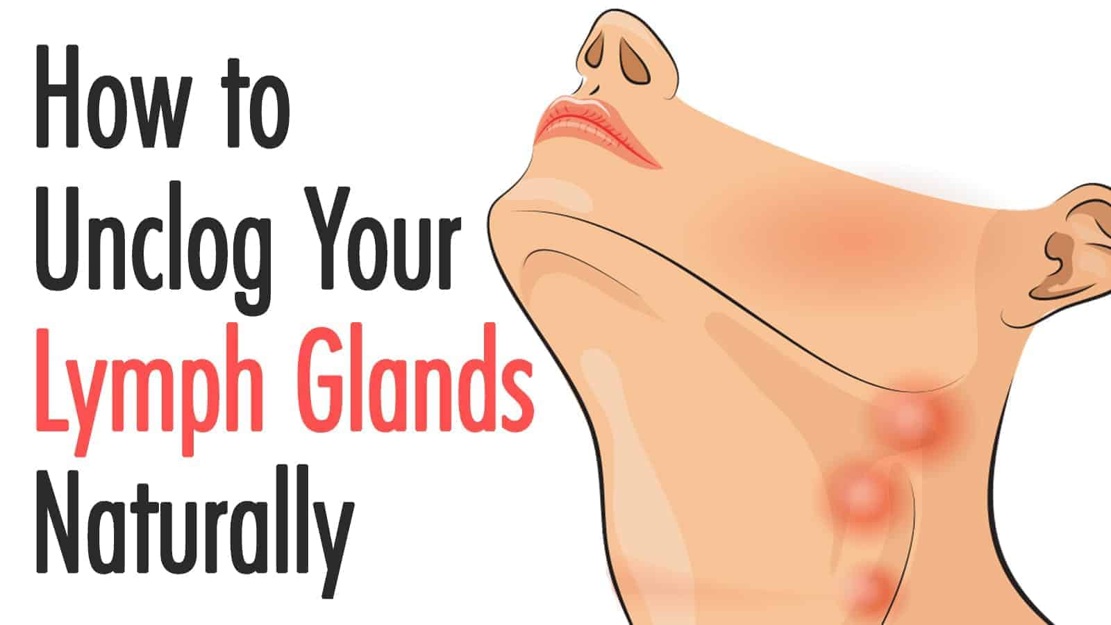 lymph glands
