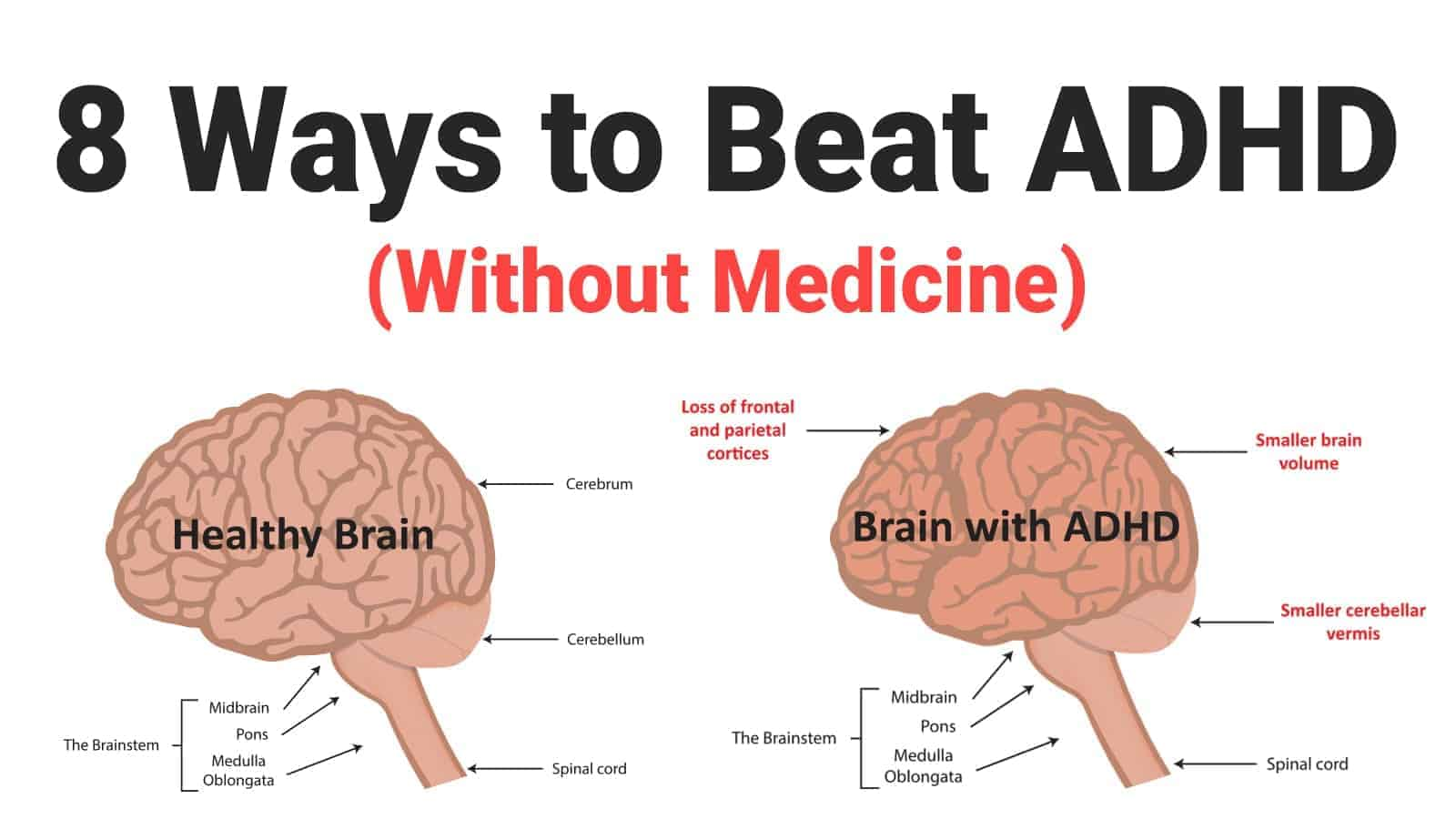 8 Ways To Beat Adhd  Without Medicine