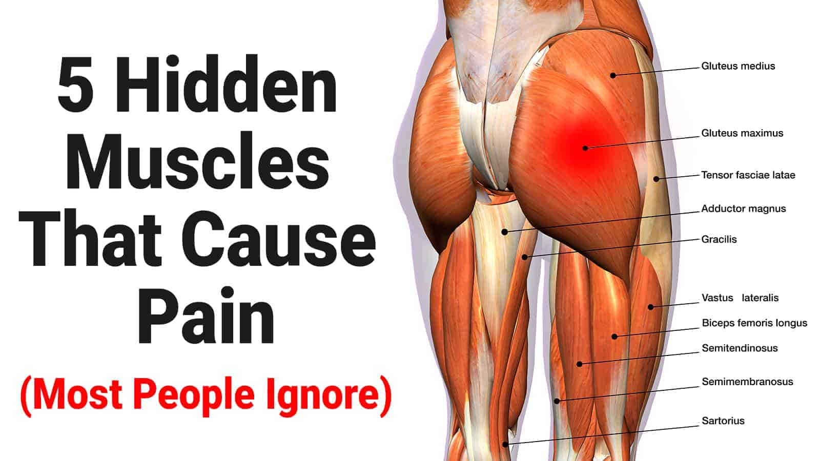 pain in muscles
