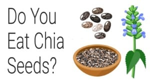 zinc deficiency - chia seeds