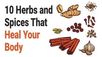 herbs and spices heal your body