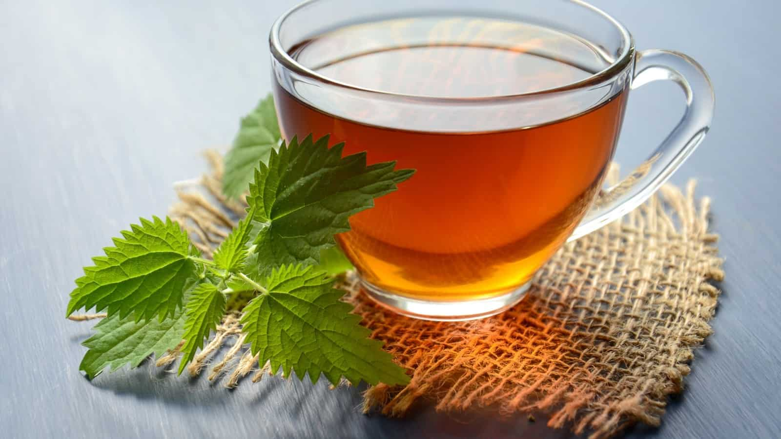 15 Amazing Health Benefits Of Peppermint Tea