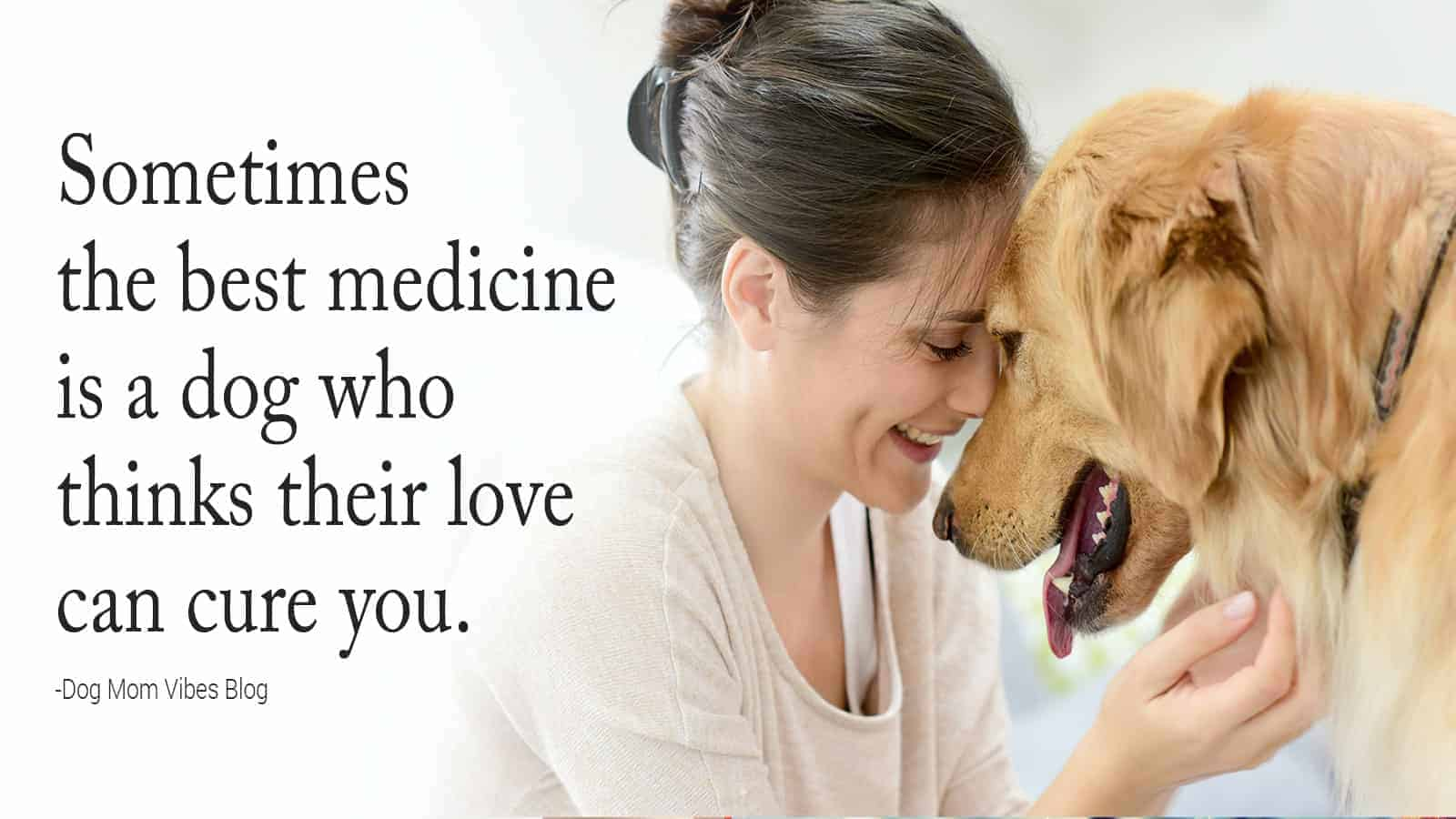 canine quotes