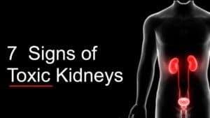 toxic kidneys