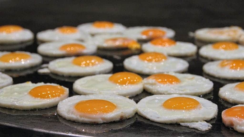 eggs contain biotin