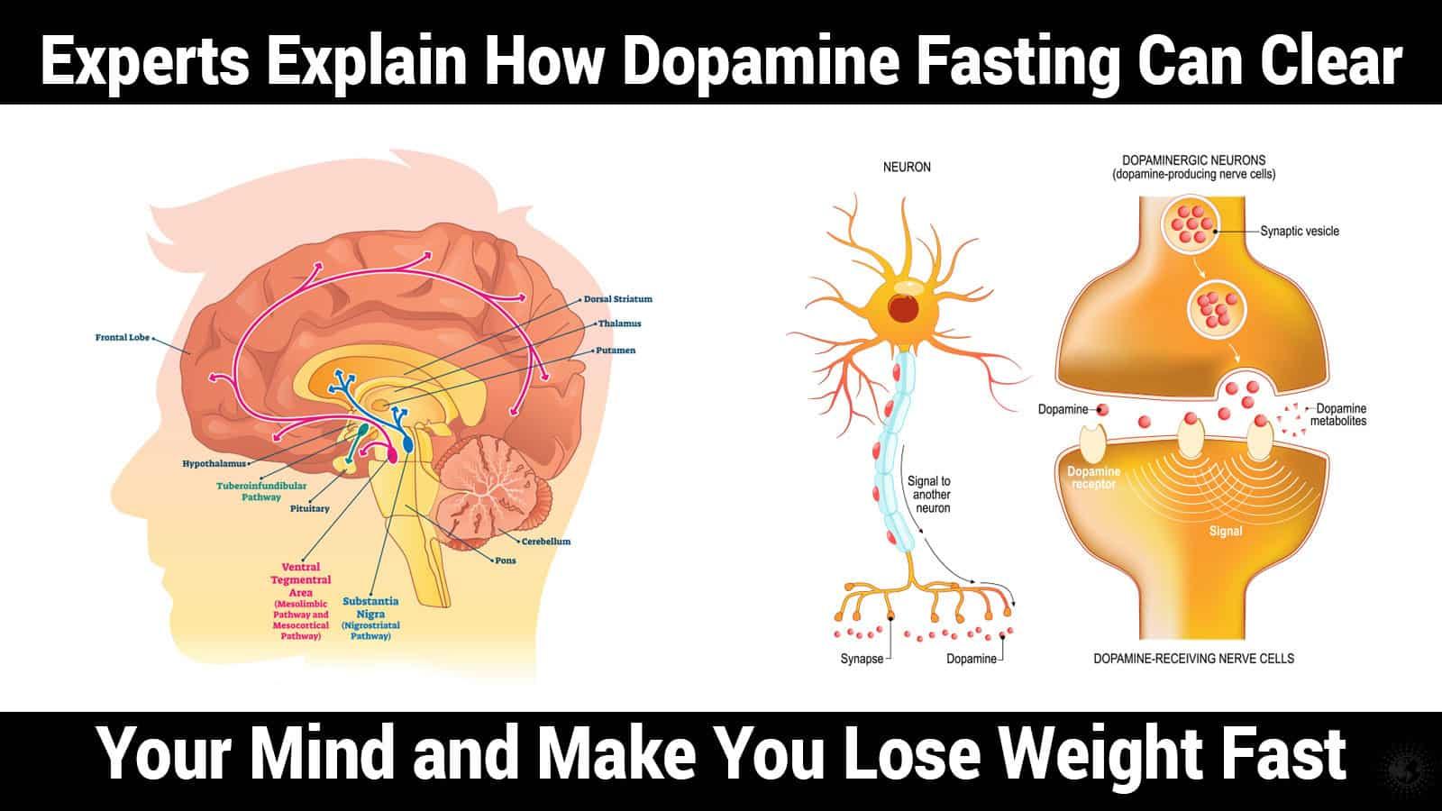 dopamine fasting