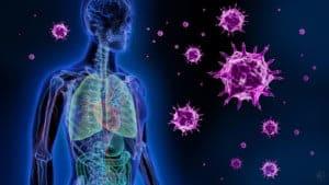flu virus prevention