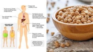 chickpeas a prebiotic food