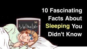 facts about melatonin and sleep