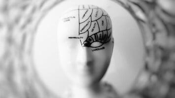 mind concepts