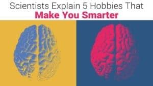 hobbies make you smarter