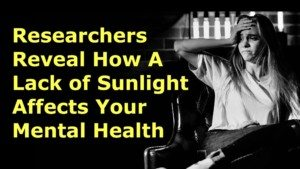 organize your space for sunlight
