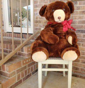 social distancing teddy bear hunts