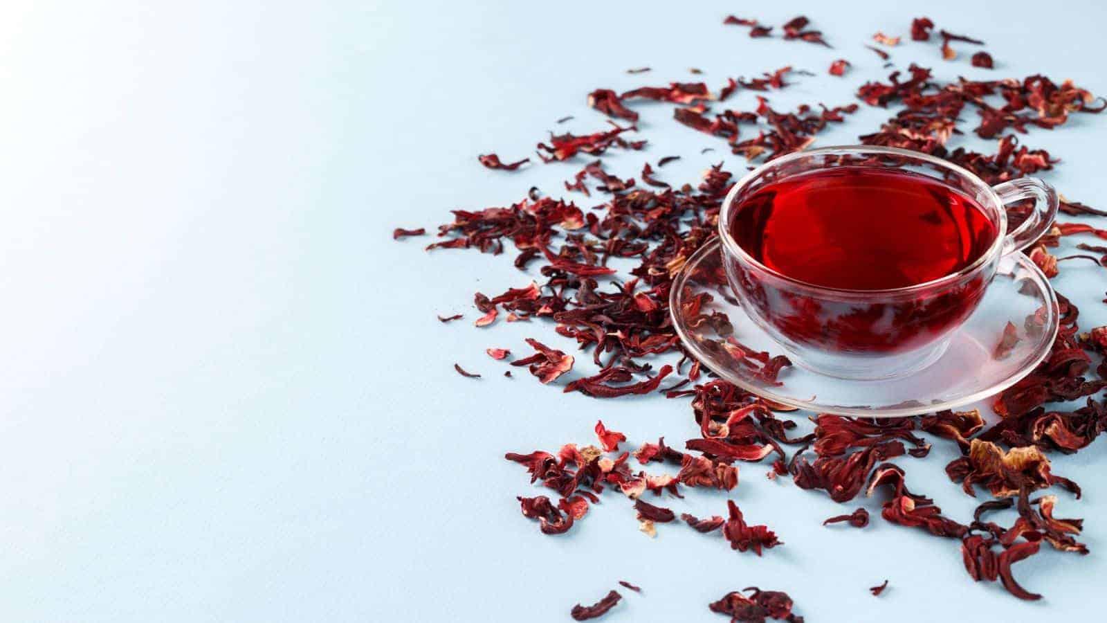 12 benefícios de beber chá de hibisco para nunca ignorar | Leitura de 5 minutos 1