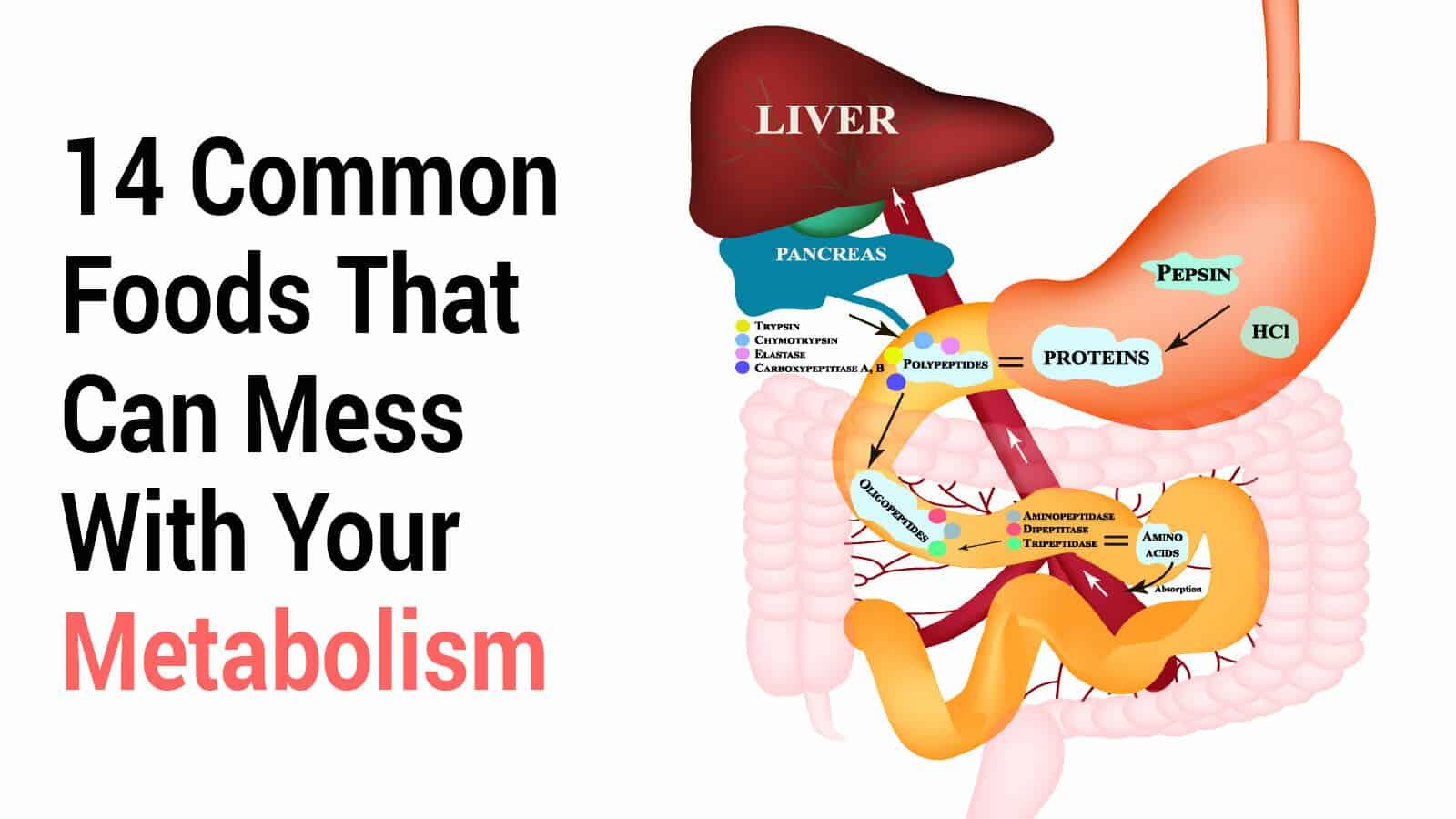 metabolism schema Metode de îmbunătățire