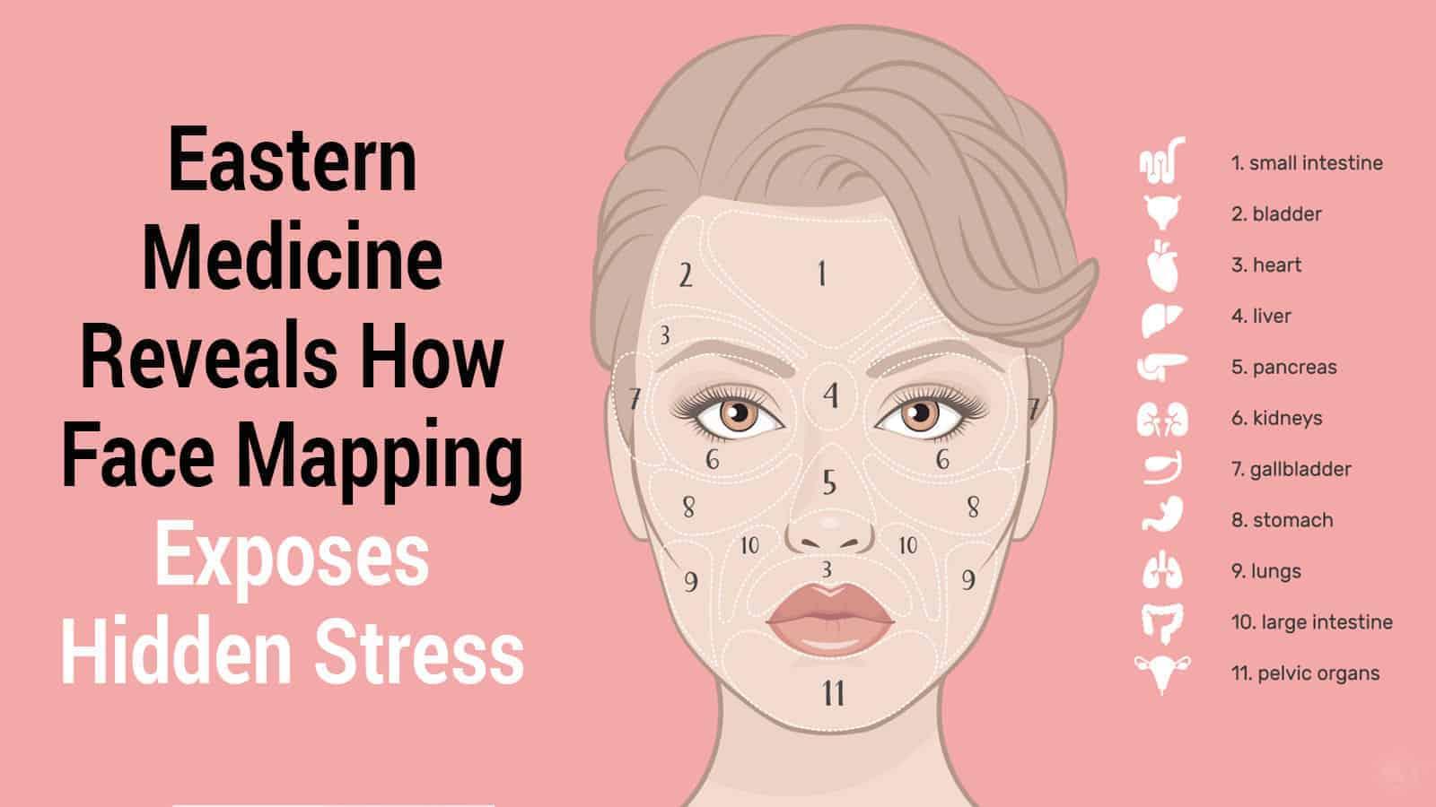 Medicina Oriental revela como o mapeamento de rosto expõe o estresse oculto » 2