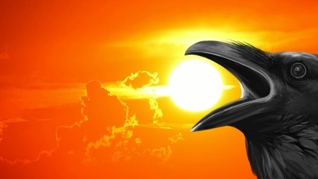 ravens spirit animal