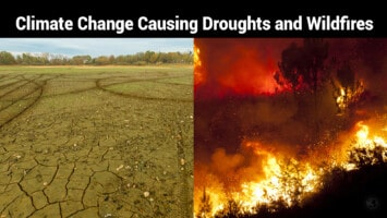 climate change causing droughts and wildfires