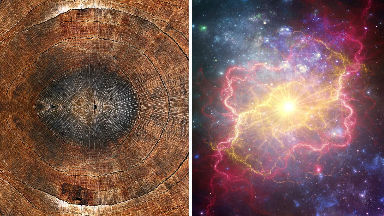supernova activity