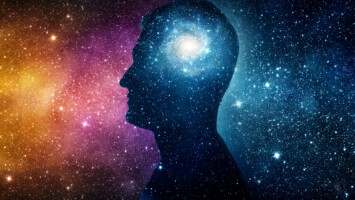 brain and the cosmos