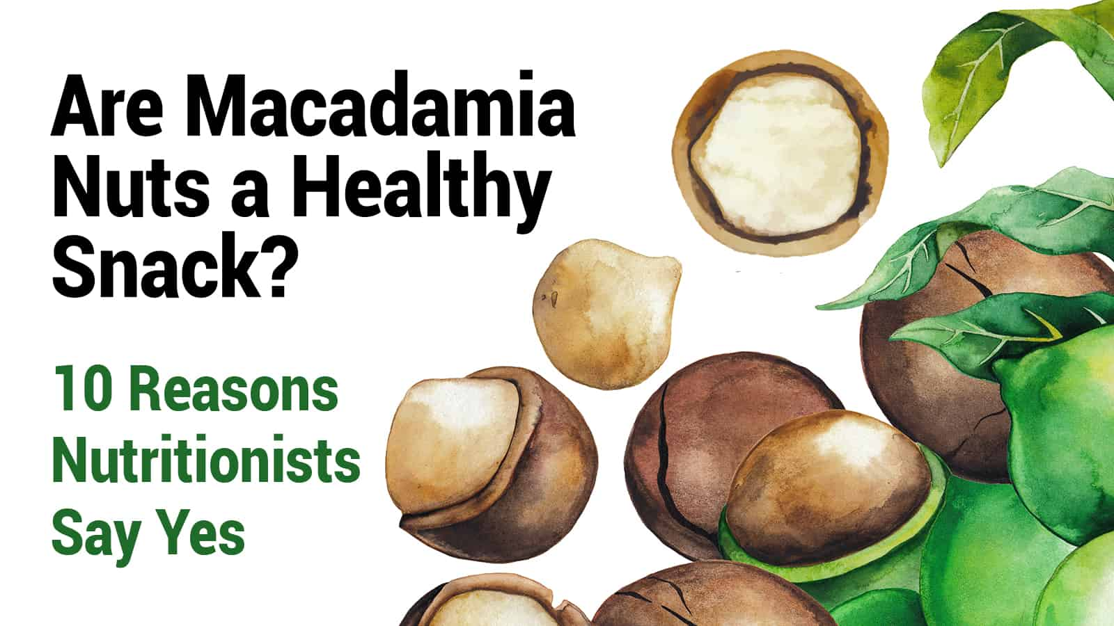 Are Macadamia Nuts A Healthy Snack 10 Reasons Nutritionists Say Yes