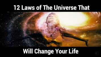 laws of the universe