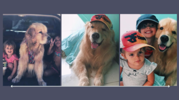 growing up with a dog