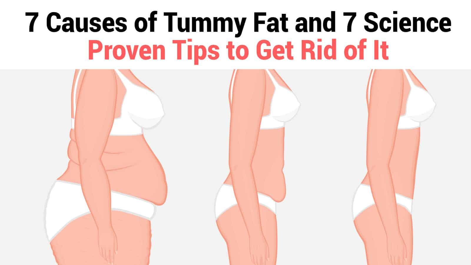 tummy fat